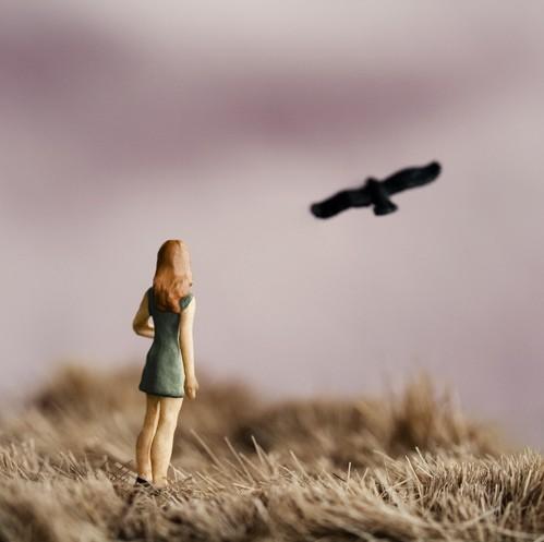 Автор фото миниатюры Erin Tyner