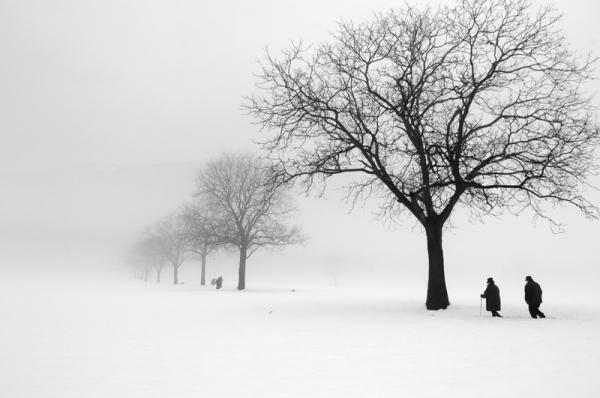 Черно-белые фотоснимки в стиле минимализм.